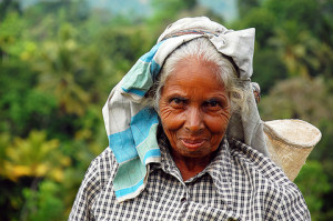 Tamil tea worker in Southern India