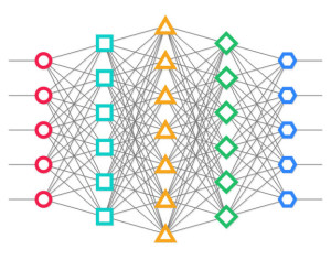 A neural network showing connections between the nodes